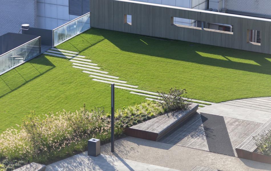 ervaren dakdekkersbedrijf in nijmegen om groendak aan te leggen