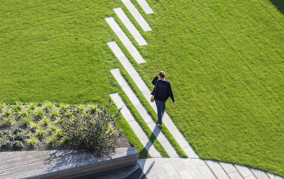 ervaren dakdekkersbedrijf in malden om groendak aan te leggen